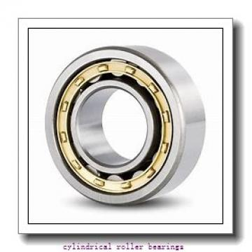 FAG NJ224-E-M1 Cylindrical Roller Bearings
