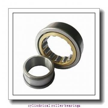 FAG NU2224-E-M1 Cylindrical Roller Bearings