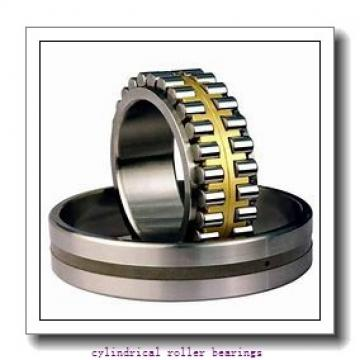 100 mm x 180 mm x 46 mm  FAG NUP2220-E-TVP2 Cylindrical Roller Bearings
