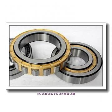 FAG NU1017-M1-C3 Cylindrical Roller Bearings