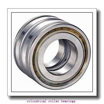 45 mm x 85 mm x 19 mm  FAG NU209-E-TVP2 Cylindrical Roller Bearings