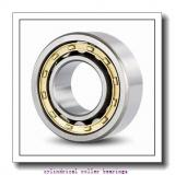 FAG NU1028-M1-C4 Cylindrical Roller Bearings